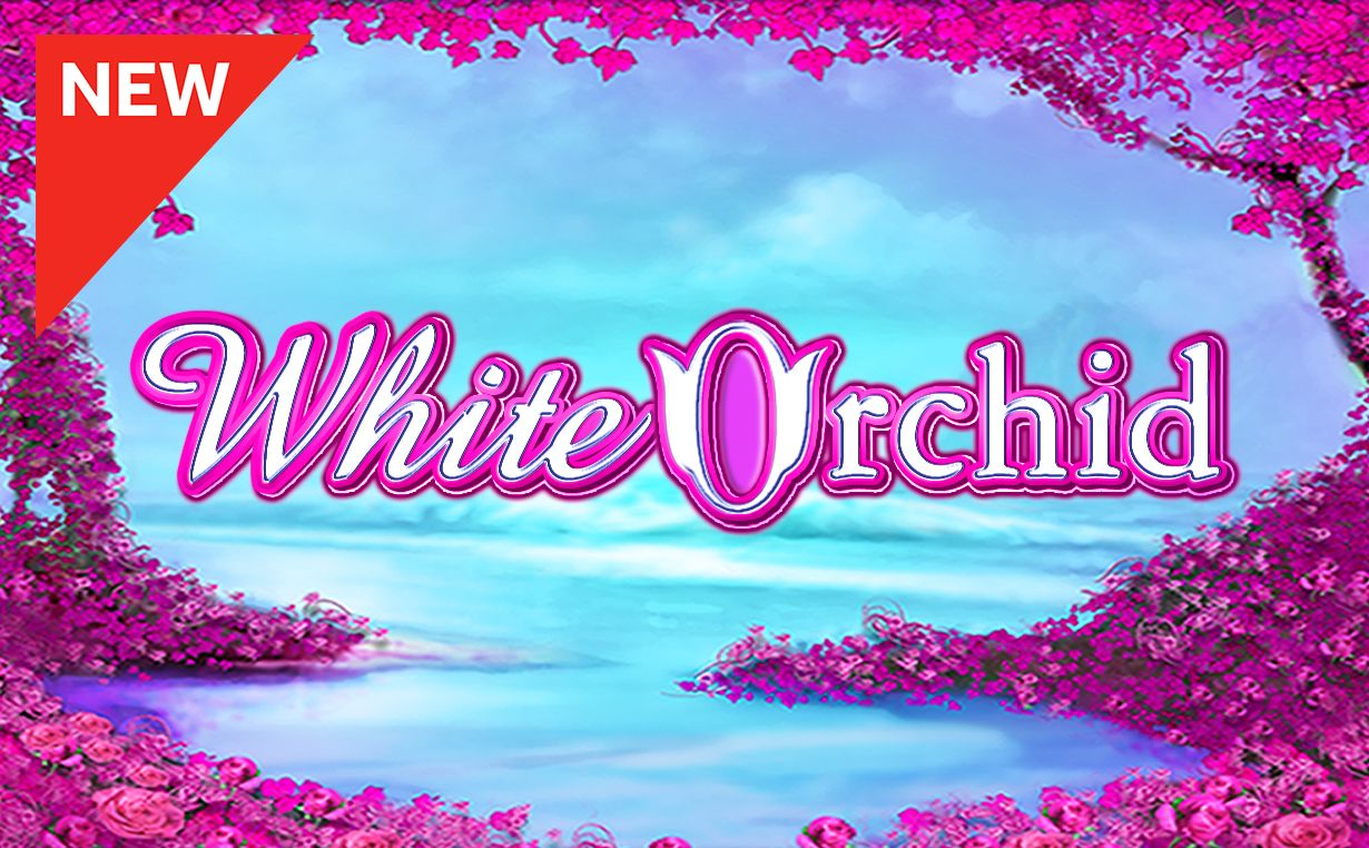 Play black orchid slot free