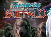 Thundering Buffalo Slot Review Online Claim your Welcome Bonus
