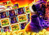 Buffalo Pokie Review Get your Free Online Bonus